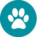 Forebyg sygdom og få færre dyrlæge regninger