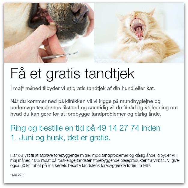 Gratis tandtjek af hund og katte_1